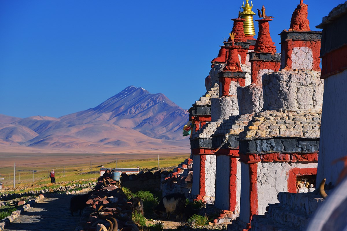 By Dangra Tso